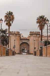 Qué ver Badajoz, Puente de Palma