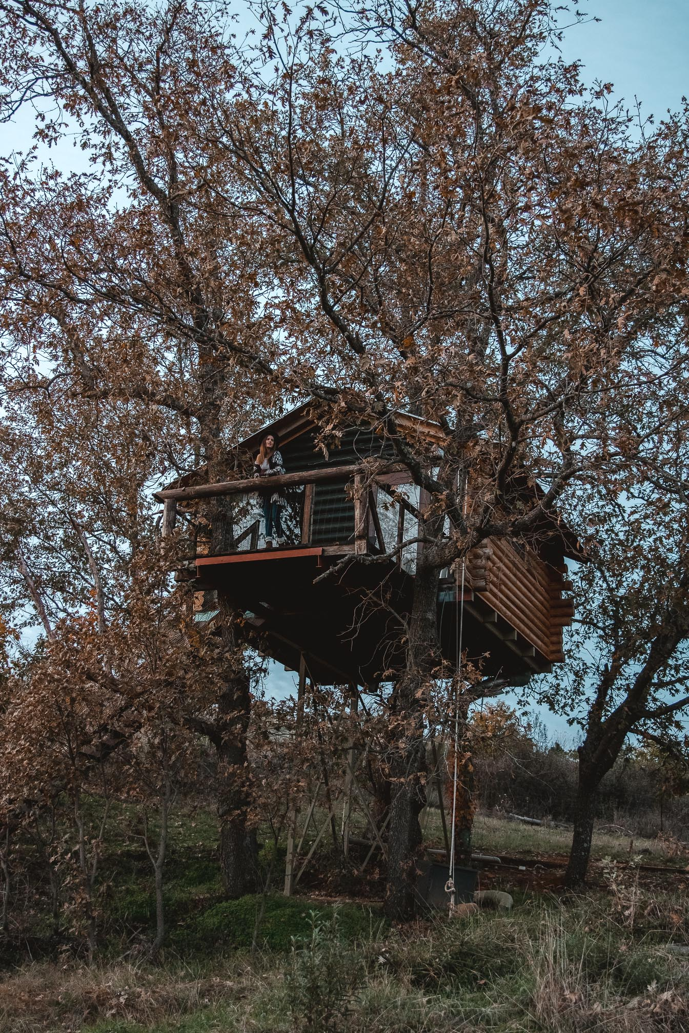 cabaña arbol hotel extremadura